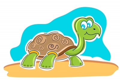 When it comes to exercise, I'm definitely with the tortoise